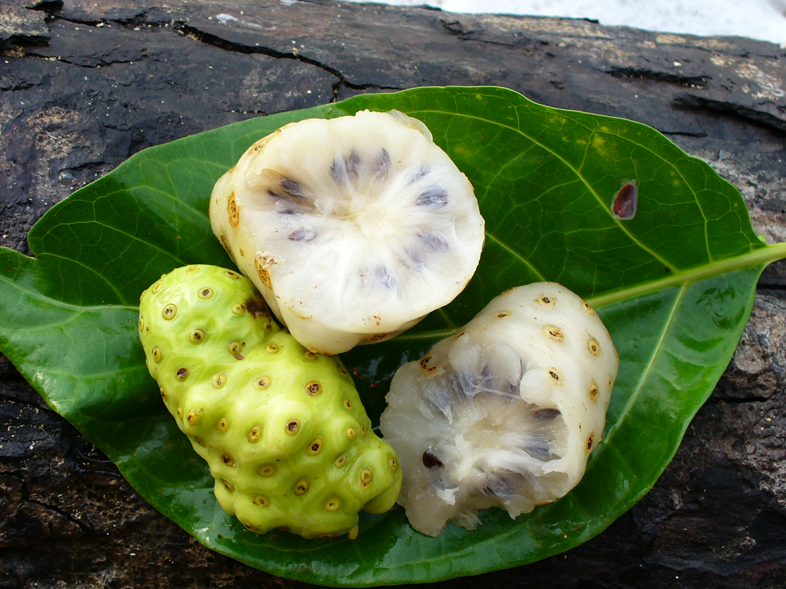 how to use noni leaves