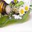 9 beneficios de las Flores de California
